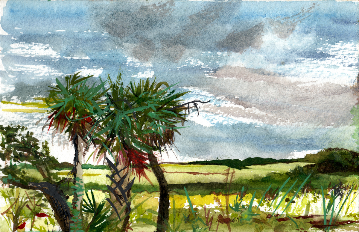South Carolina 2, watercolor on paper 2010
